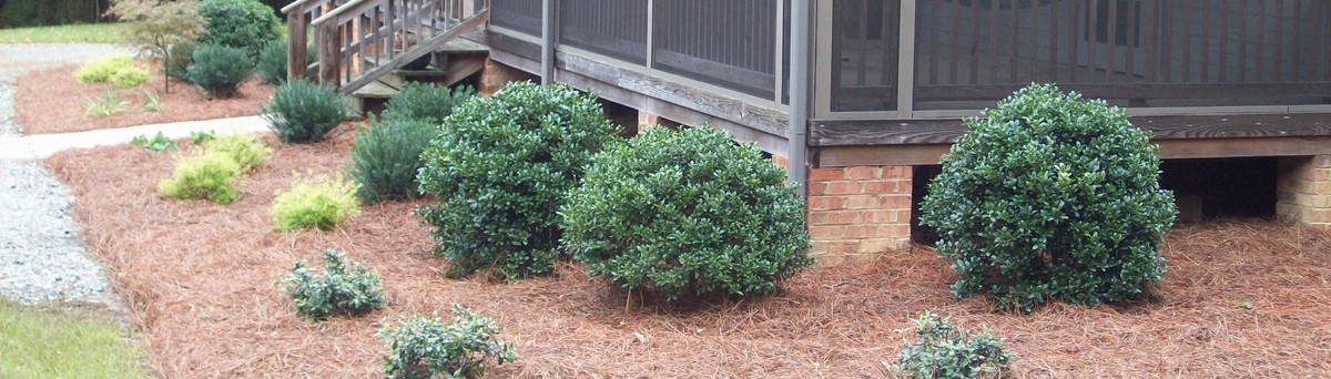 New Garden Landscaping & Nursery - Greensboro, NC, US 27410