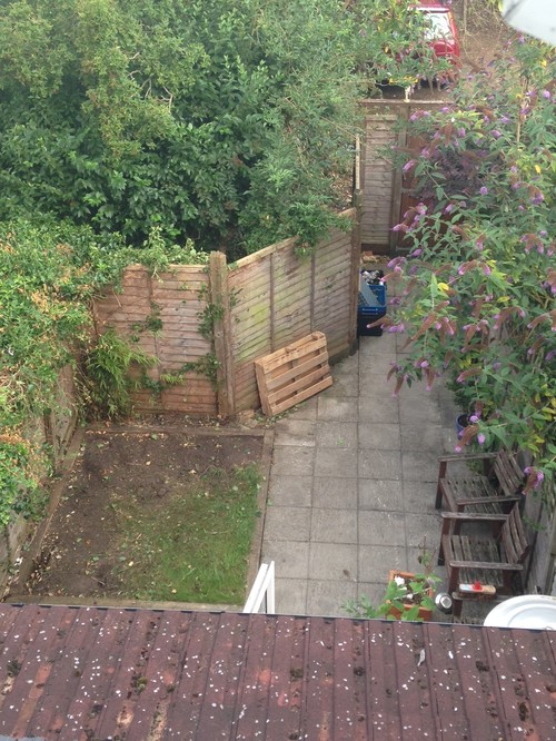 small north facing london garden in need of some tlc