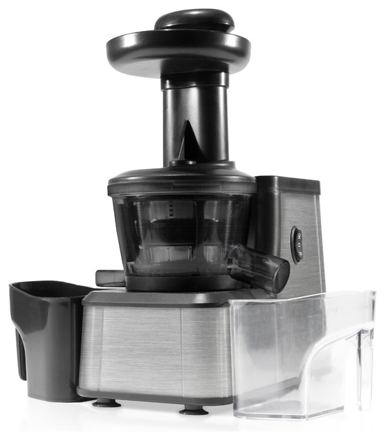 Shop Houzz Storebound Dash Slow Squeeze Juicer, Stainless Steel - Juicers