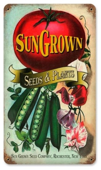 Sun Gown Seeds Metal Sign.