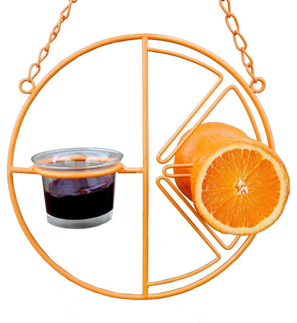Heath™ CF-133 Clementine Oriole Bird Feeder with Attached Hanging Chain