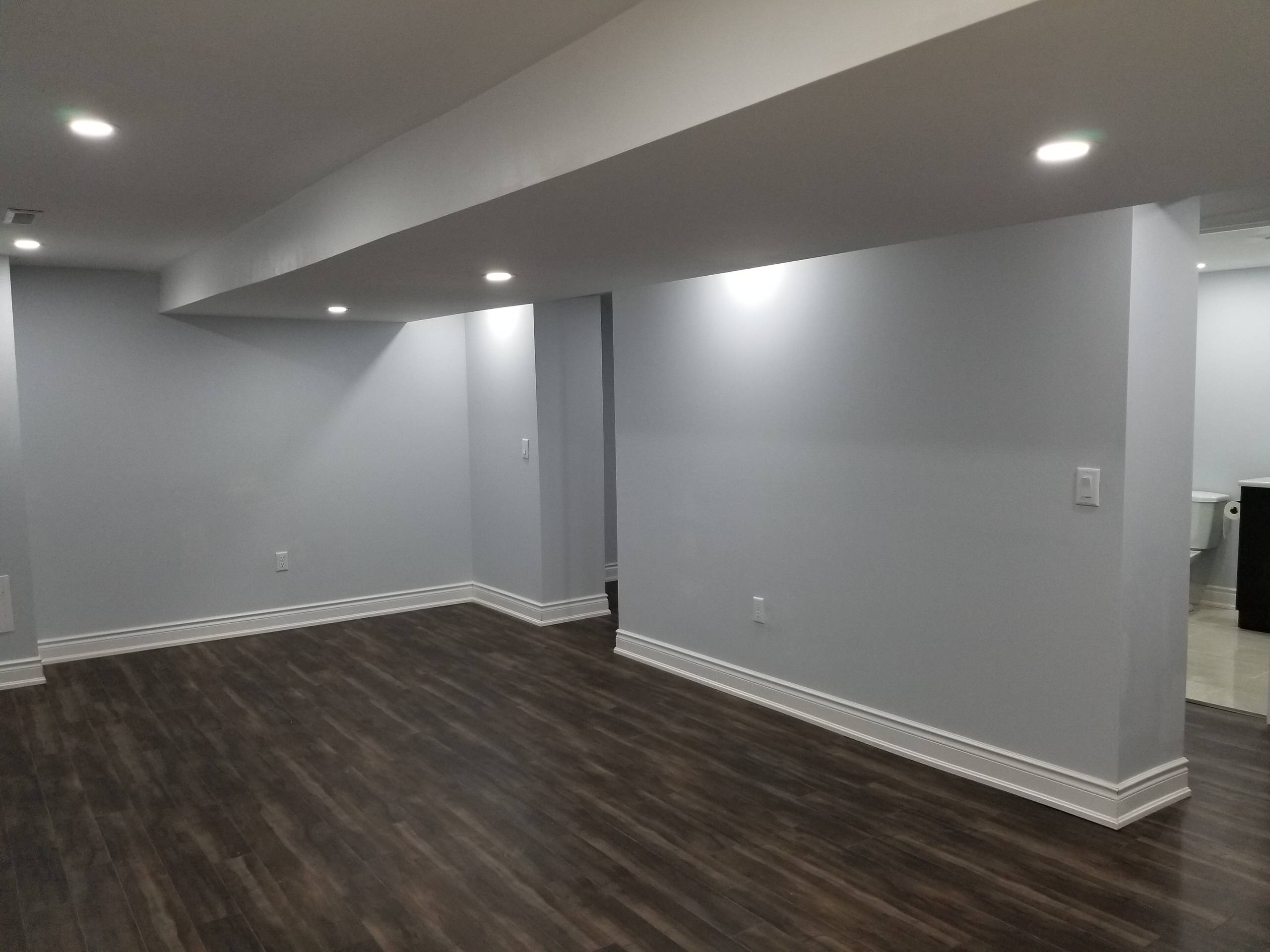 Basement Re-Modeling