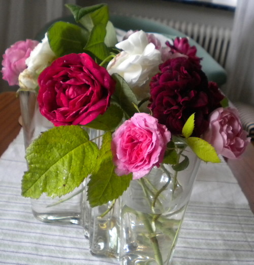 A Bouquet Of Saved Roses