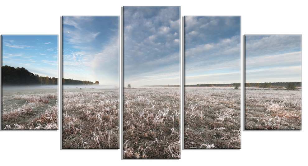 Autumn Hoarfrost On Grass Landscape Print Wall Artwork Contemporary Prints And Posters By Design Art Usa