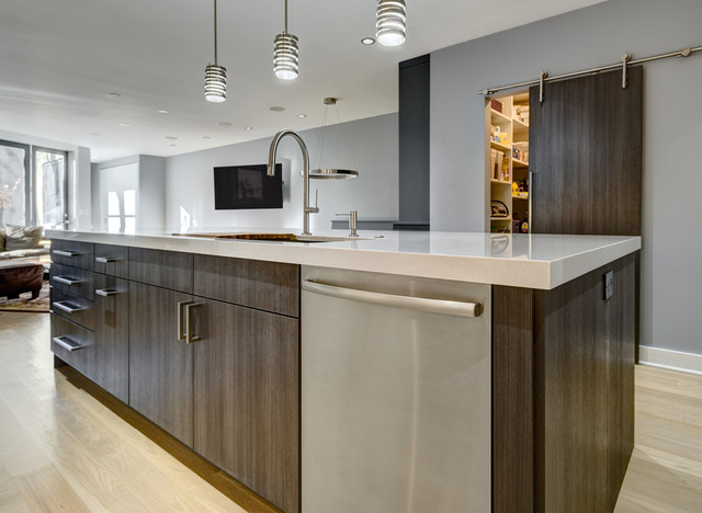 Sleek And Modern In Chicago Modern Chicago By Kitchen Design Partners Inc