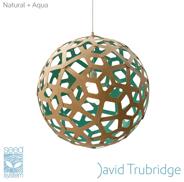 David trubridge coral pendant light aqua aloadofball Gallery