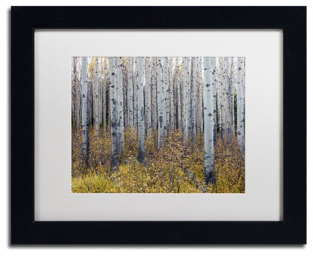 Pierre Leclerc &x27;aspen Trees In Autumn&x27; Matted Art, Black Frame, White, 14x11.