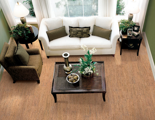 Real Cork Floors contemporary floors
