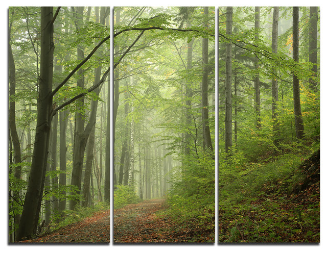 """early Green Fall Forest"" Photo Canvas Art Print, 3 Panels, 36""x28""."