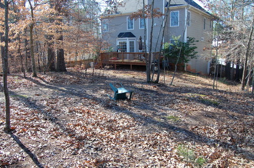 Wooded Backyard Landscaping Ideas Garden Inspiration