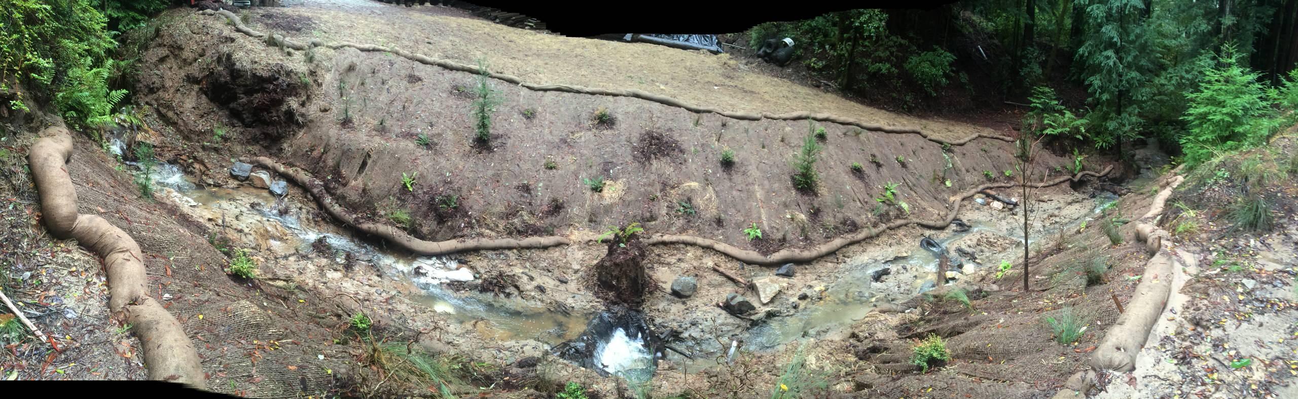 Camp Hammer Creek Restoration