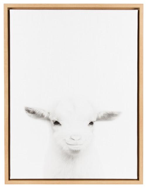 Framed Canvas Wall Art sylvie baby goat, natural framed canvas wall artsimon te tai