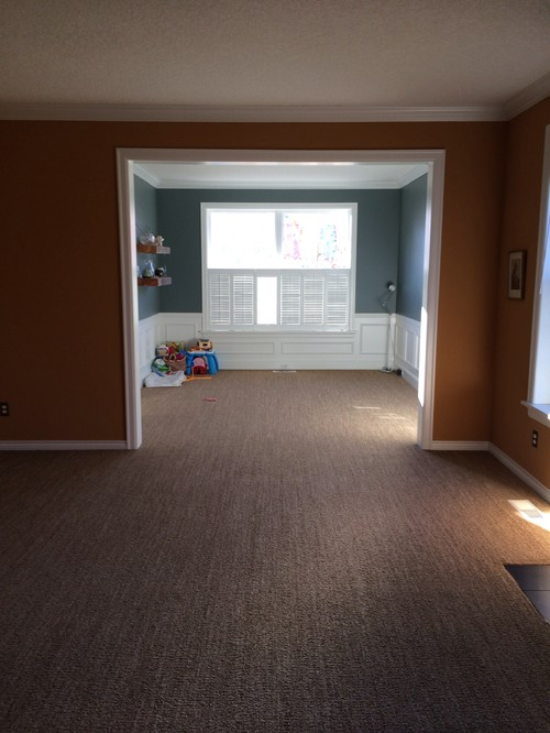 What color would you paint living room? I love dining room color but