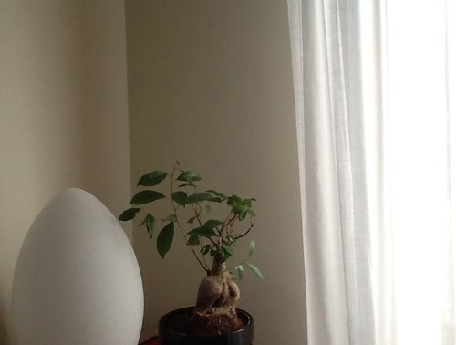 Cabina Armadio Tenda Polvere : Abbinamento colore pareti e tende