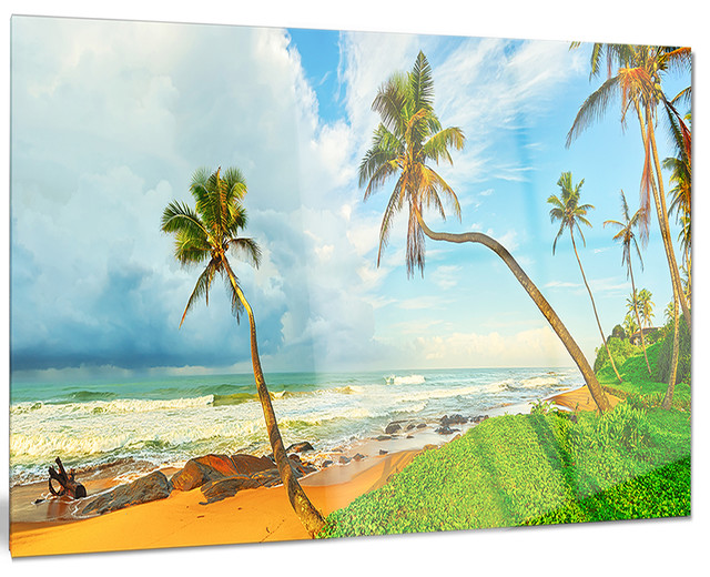 Wall decoration sri lanka : Quot palm trees over the beach sri lanka metal wall art