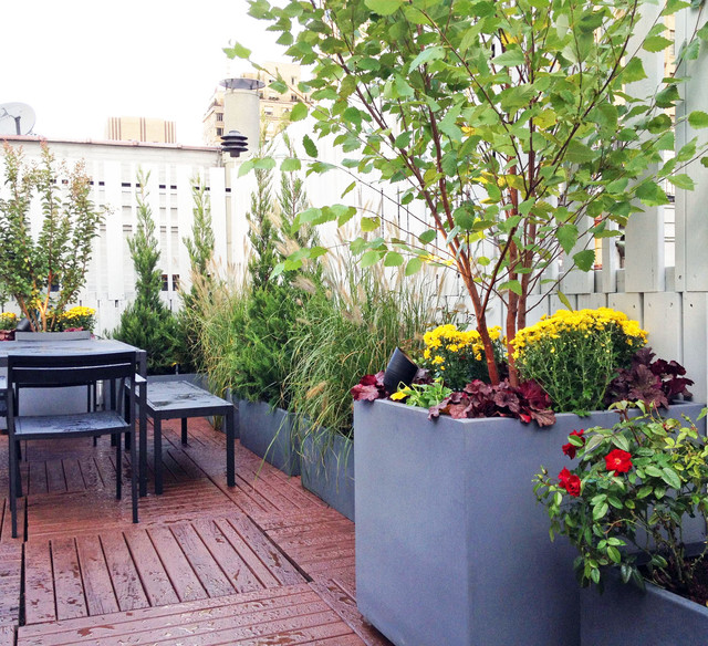 Upper west side nyc roof garden terrace deck fence for Terrace plants