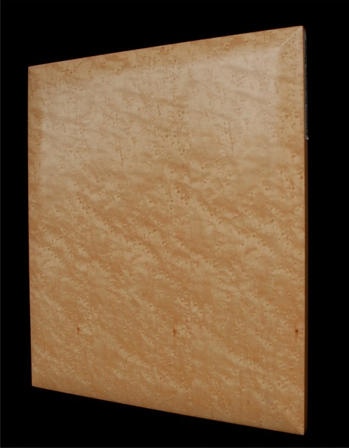 architectural veneer doors birdseye maple contemporary cabinet terms to know frame and frameless plain