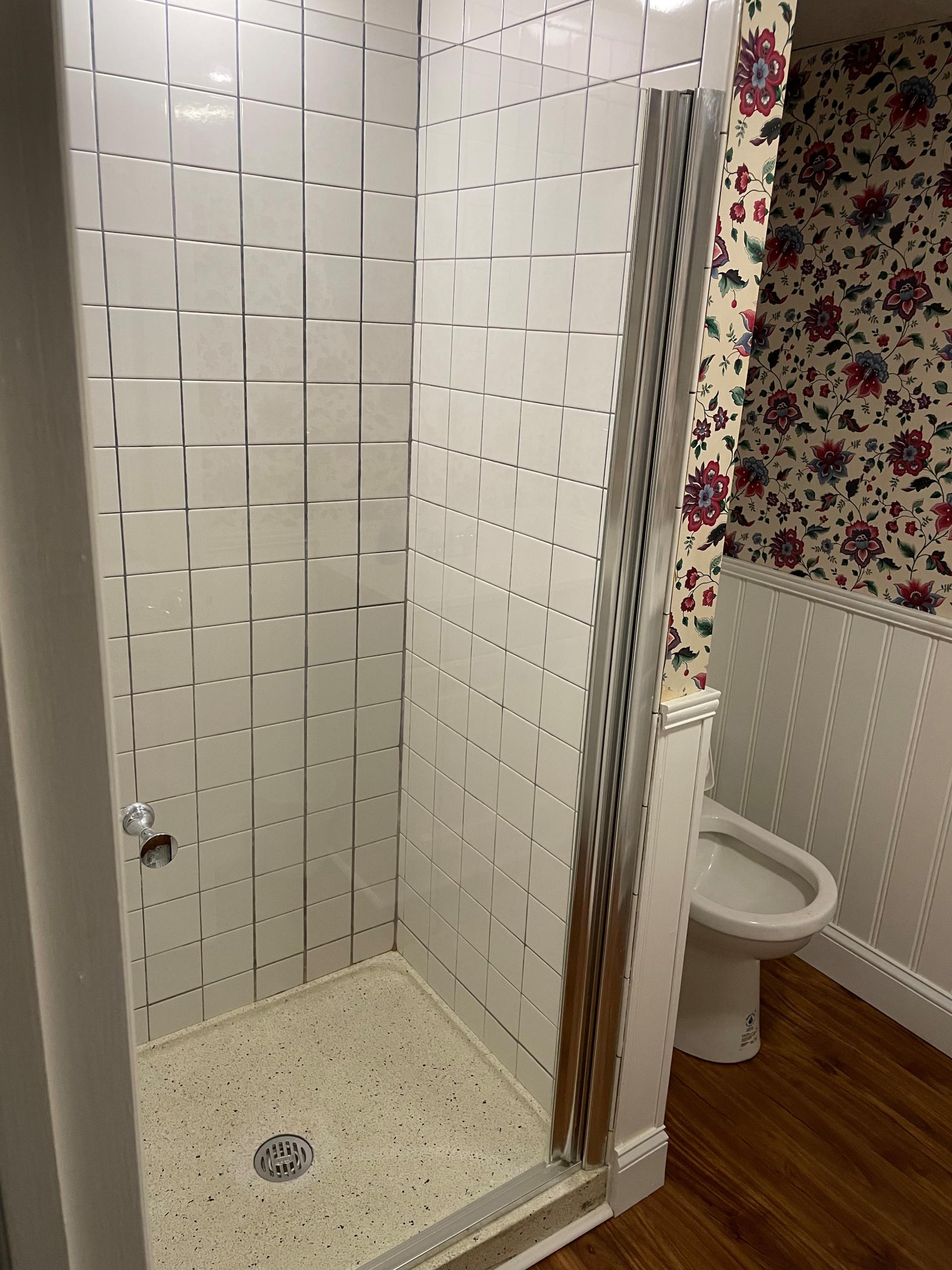 Bathroom Remodel Project 2