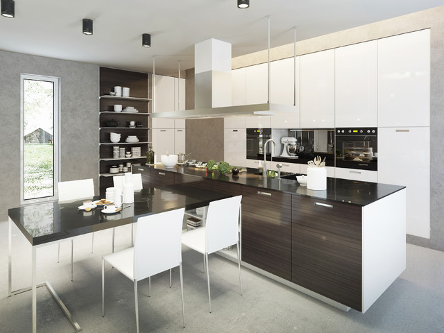 Acrylic Cabinet Contemporary Kitchen