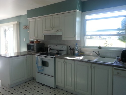 Need Help With Kitchen Renovation