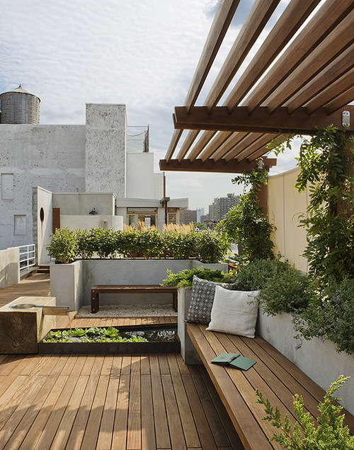 East Village Roof Garden View Towards Penthouse modern landscape