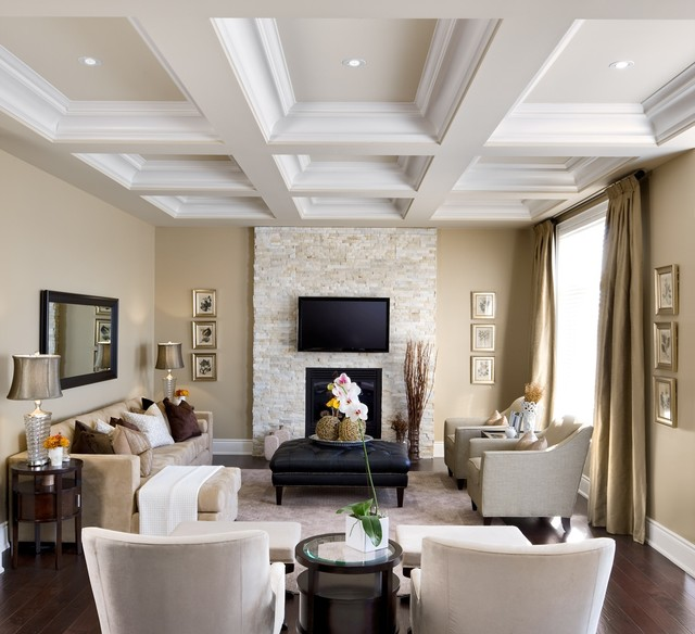 designer fireplaces transitional living room