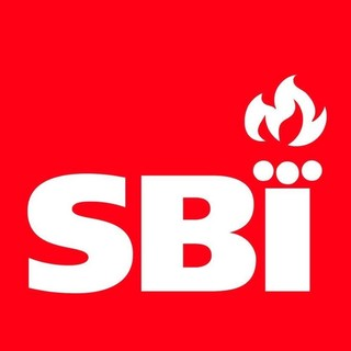 Image result for sbi logo fireplace""