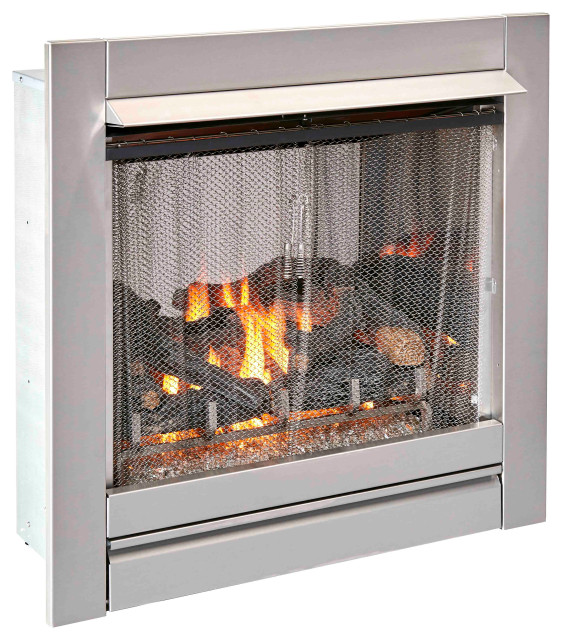 Stainless Outdoor Gas Fireplace Insert