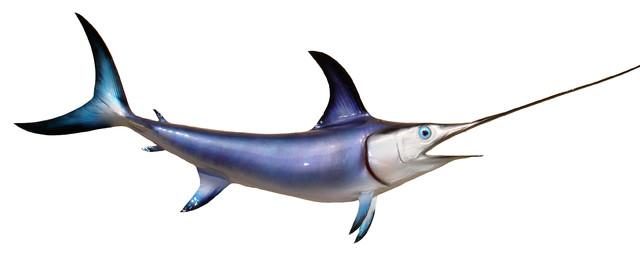 60 swordfish half mount fish replica beach style wall