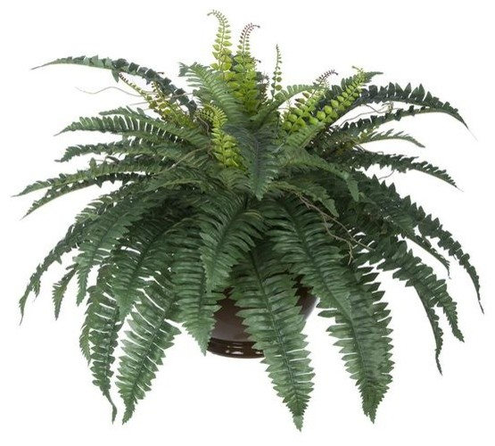 artificial fern in brown fishbowl vase - tropical - artificial