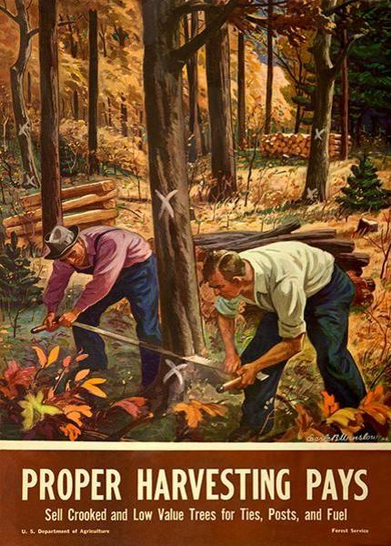 Proper Harvesting Pays 1945 World War Ii Propaganda Poster