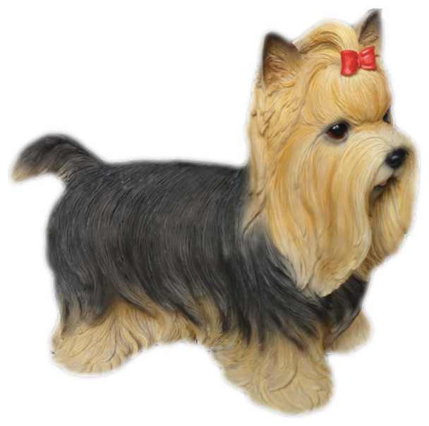 Yorkshire Terrier With Bow Dog Garden
