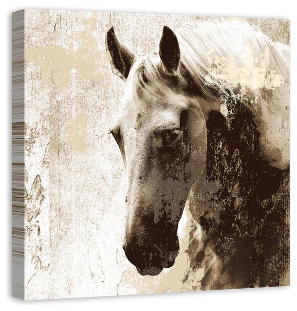 Stallion Study in Sepia\