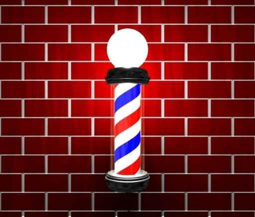Barber Pole On Brick Wall Wall Mural   18 Inches W X 15 Inches H  Contemporary Part 70