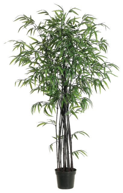 Silk plants direct black bamboo tree pack of 2 asian artificial silk plants direct black bamboo tree pack of 2 asian artificial flowers mightylinksfo