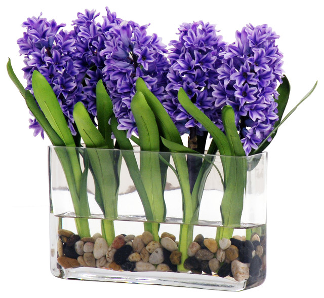 Blue Hyacinth In Gl Vase With River Rocks Contemporary