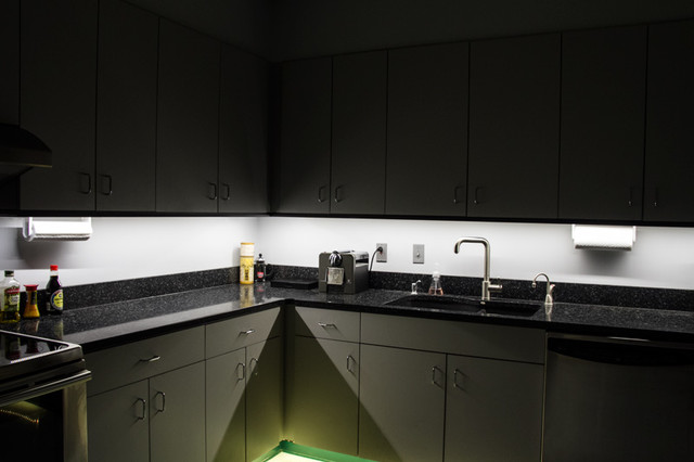 Http Www Houzz Com Photos 7000314 Led Kitchen Under Cabinet And Toe Kick Lighting Contemporary Kitchen St Louis