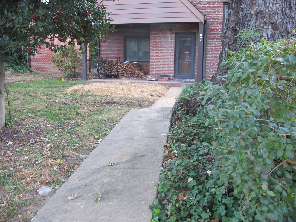 Widened Driveway and Front Renovation
