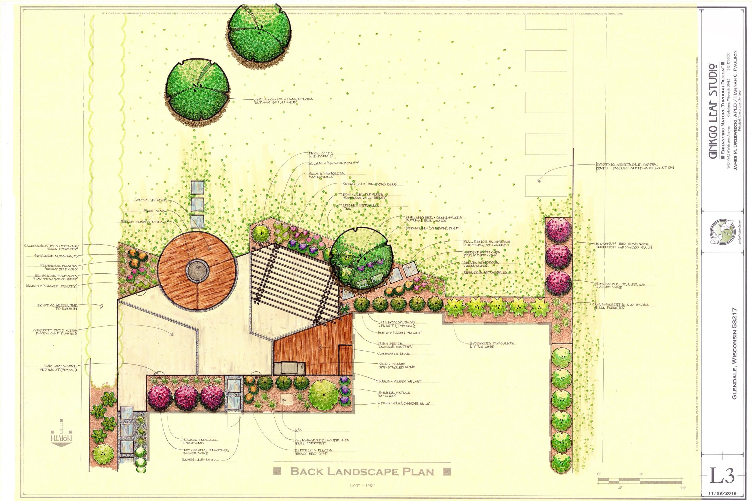 Mid century Landscape Renovation - Glendale