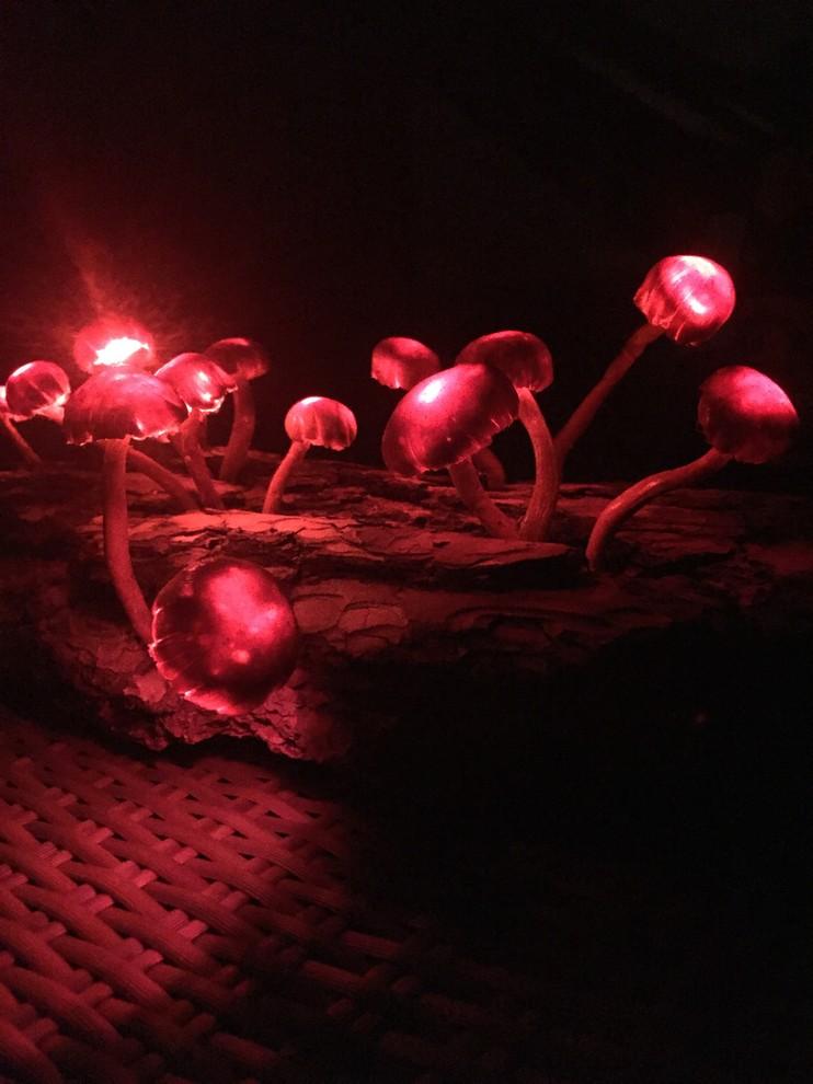 Der magische Pilz-Zauberwald