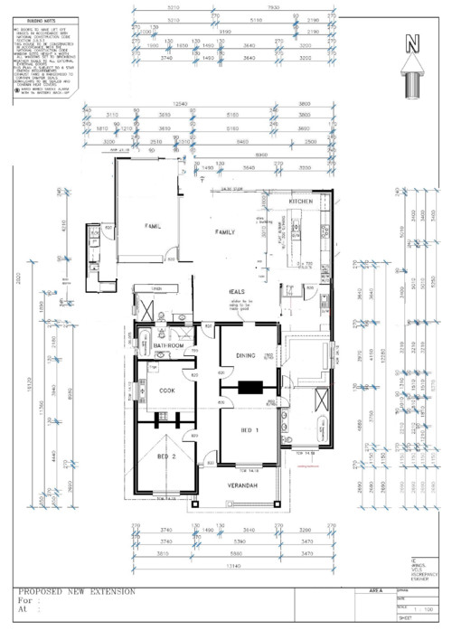 extension roof and floor plan advice