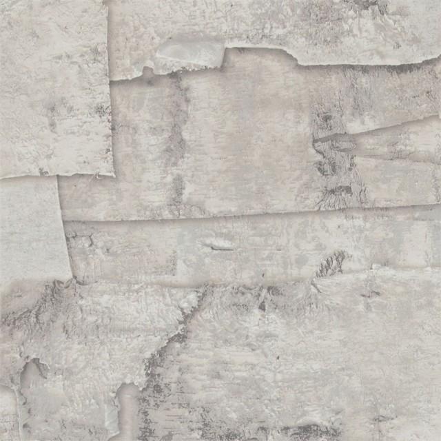 birch bark warm grey wallpaper r2578 sample