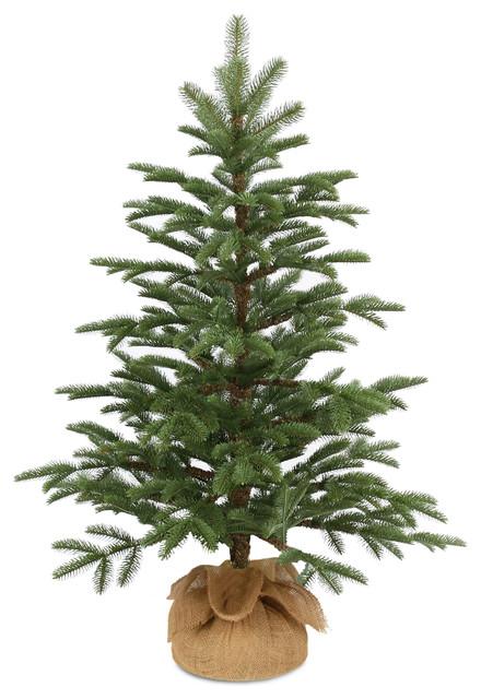 3 norwegian seedling tree traditional christmas trees - Christmas Tree Company
