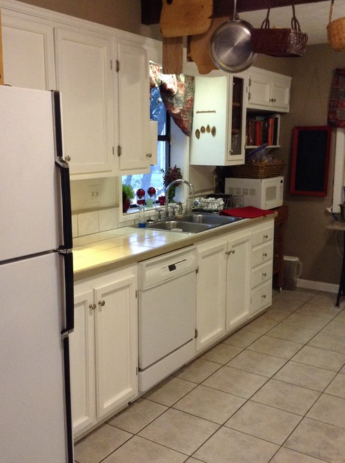 Top Replacing only one white appliance with stainless steel? SQ78
