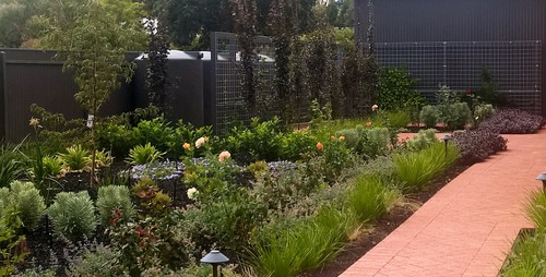 how to hide a rainwater tank in the garden