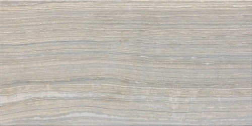 Eramosa Glazed Tile Silver Contemporary Wall And