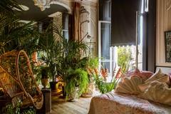Выставка в Челси 2020: Что она рассказала о будущих садах