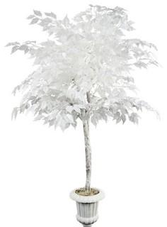 5 White Ficus Tree In White Pedestal Planter 2778