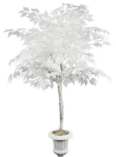 5 White Ficus Tree in White Pedestal Planter 2778  : contemporary artificial plants and trees from www.houzz.com size 406 x 550 jpeg 33kB