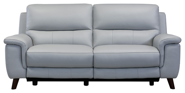 Lizette Sofa, Dark Brown Wood Finish and Dove Gray Genuine Leather